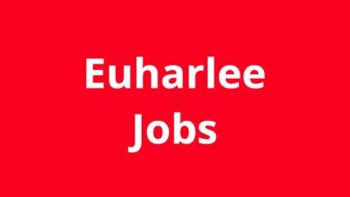 Jobs in Euharlee GA