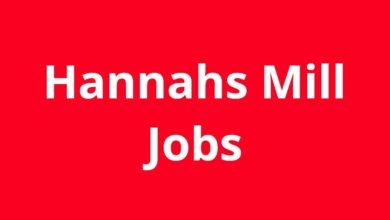 Jobs in Hannahs Mill GA