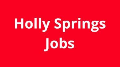 Jobs in Holly Springs GA