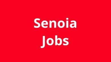 Jobs in Senoia GA
