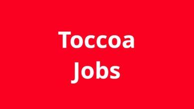 Jobs in Toccoa GA