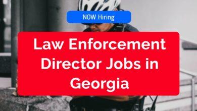 Law Enforcement Director Jobs in Georgia